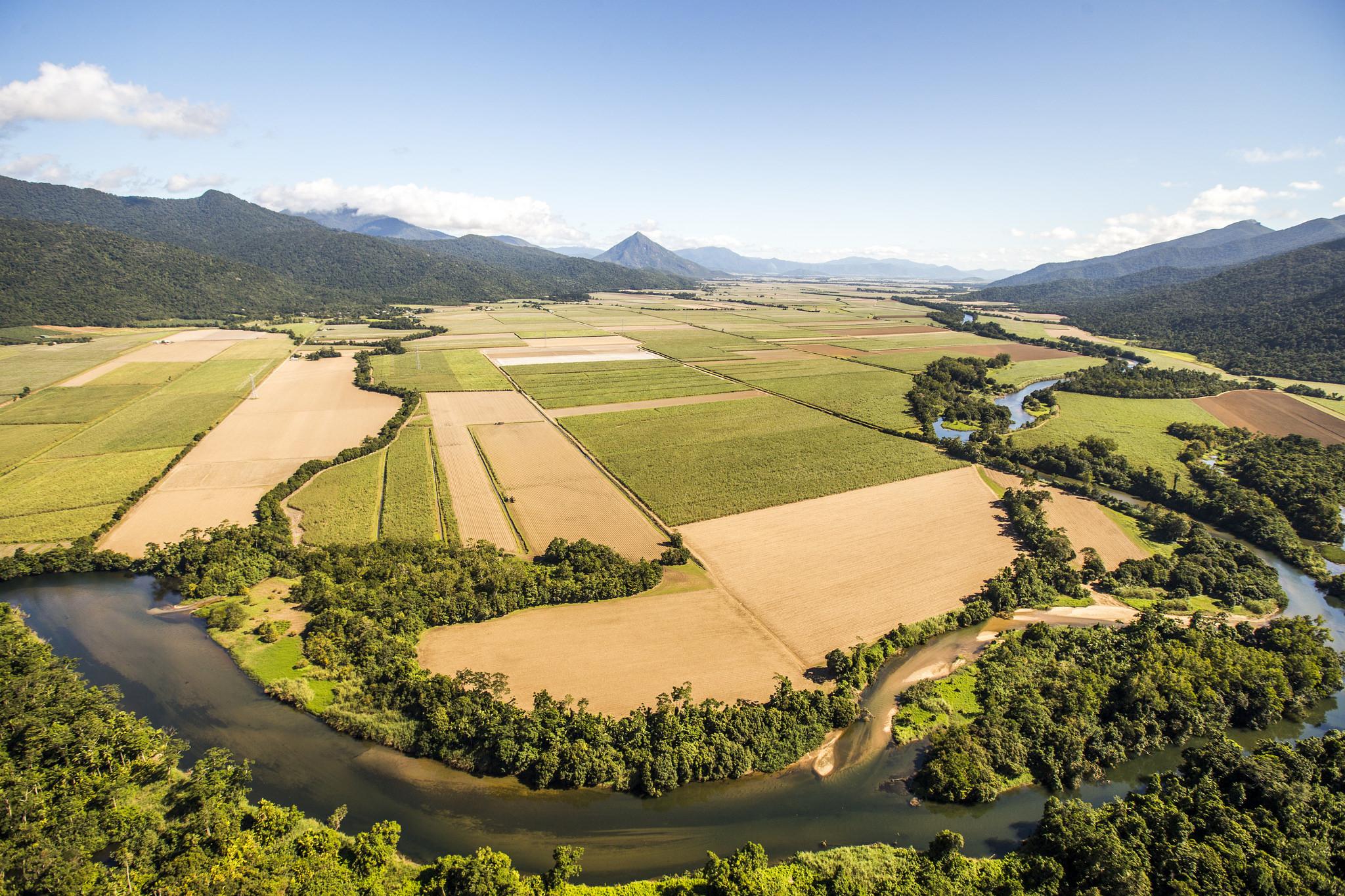 agriculture (c) WWF